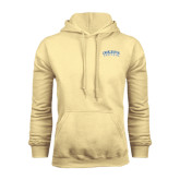Champion Vegas Gold Fleece Hood-Charleston Southern Arched