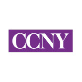 Small Decal-CCNY, 6 in wide