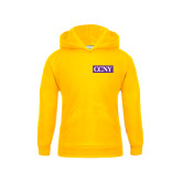 Youth Gold Fleece Hoodie-CCNY