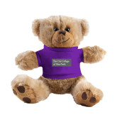Plush Big Paw 8 1/2 inch Brown Bear w/Purple Shirt-Official Logo