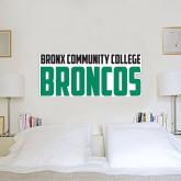 2 ft x 6 ft Fan WallSkinz-Bronx Community College Bronocs