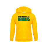 Youth Gold Fleece Hoodie-Bronx Community College Bronocs