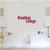 1 ft x 3 ft Fan WallSkinz-Brooklyn College