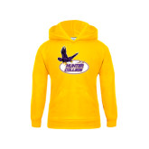 Youth Gold Fleece Hoodie-Hunter College