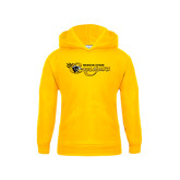 College Youth Gold Fleece Hoodie-Medgar Evers Cougars
