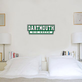 6 in x 2 ft Fan WallSkinz-Dartmouth Big Green