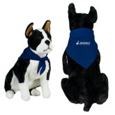 Royal Pet Bandana-Dassault Aviation