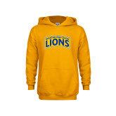 Youth Gold Fleece Hoodie-Mountain View College Lions in Box