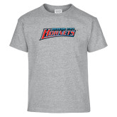 Youth Grey T-Shirt-Delaware State Hornets
