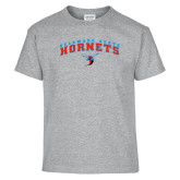 Youth Sport Grey T Shirt-Arched Delaware State Hornets w/Hornet