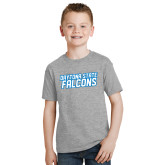 Youth Grey T-Shirt-Daytona State Falcons Stacked