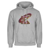 Grey Fleece Hoodie-Primary Athletic Mark