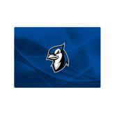Generic 13 Inch Skin-Blue Jays Mascot