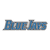 Extra Large Decal-Blue Jays Wordmark, 18 inches wide