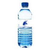Water Bottle Labels 10/pkg-Viking Head