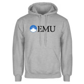 Grey Fleece Hoodie-Institutional Logos