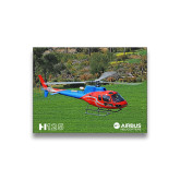 5 x 7 Photographic Print-H125 Over Grass