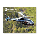 8 x 10 Photographic Print-AS350 Over Marsh