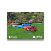 8 x 10 Photographic Print-H125 Over Grass