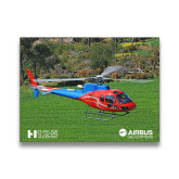 11 x 14 Photographic Print-H125 Over Grass