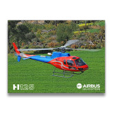 11 x 17 Photographic Print-H125 Over Grass