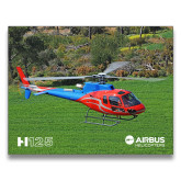 15 x 20 Photographic Print-H125 Over Grass