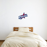 2 ft x 2 ft Fan WallSkinz-Patriots Star