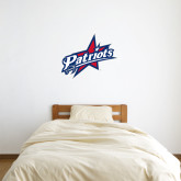 3 ft x 3 ft Fan WallSkinz-Patriots Star