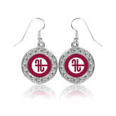 Crystal Studded Round Pendant Silver Dangle Earrings-Identity Mark