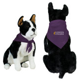 Purple Pet Bandana-Goshen College Stacked