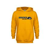 Youth Gold Fleece Hoodie-Goucher College Horizontal