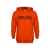Youth Orange Fleece Hoodie-University Mark