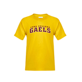 College  Youth Gold T Shirt-Arched Iona College Gaels