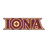 Large Magnet-Iona Wordmark, 12 inches wide