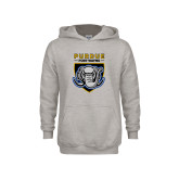 Youth Grey Fleece Hood-Primary Athletic Logo