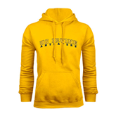 Gold Fleece Hoodie-UC Irvine Anteaters Arched