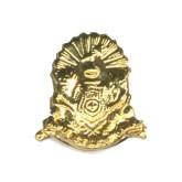 Coat of Arms Alumni Pin-