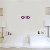 1 ft x 1 ft Fan WallSkinz-Knox