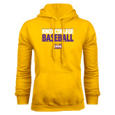 Gold Fleece Hood-Knox College Baseball Stacked