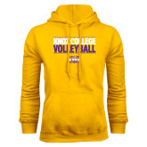 Gold Fleece Hood-Knox College Volleyball Stacked