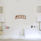 6 in x 1 ft Fan WallSkinz-Arched Lehigh