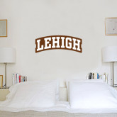 6 in x 2 ft Fan WallSkinz-Arched Lehigh