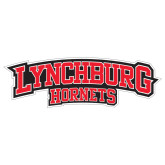 Extra Large Decal-Lynchburg Hornets, 18 inches wide
