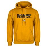 Gold Fleece Hoodie-Volleyball Workmark