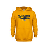 Youth Gold Fleece Hoodie-Volleyball Workmark
