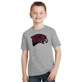 Youth Grey T-Shirt-Hawk Head