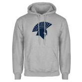 Grey Fleece Hoodie-Spartan Icon