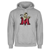 Grey Fleece Hoodie-Lion with M