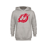Youth Grey Fleece Hood-Dragon Mark