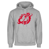 Grey Fleece Hoodie-Dragon Mark